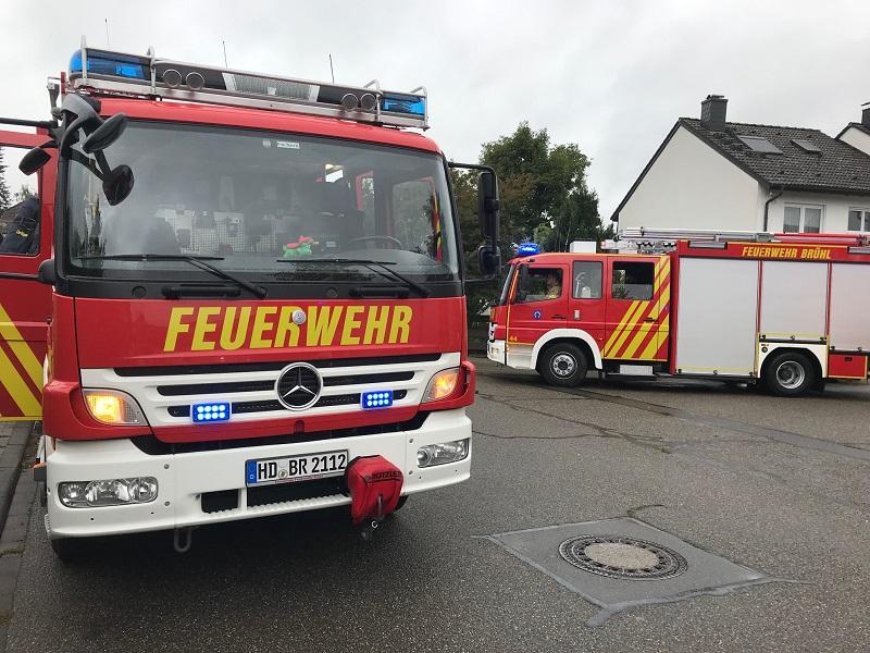 Asternweg 2019